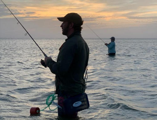 Baffin Bay: The Mystique and Lore of America's Greatest Trophy Trout Fishery