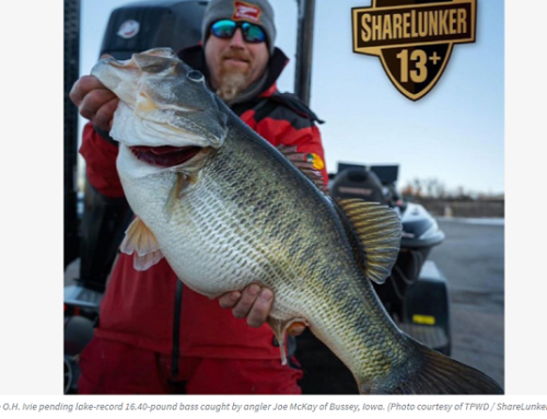 Episode 578: February Freeze Brings Banner Year For Bass Anglers and Comparing Two of North America's Most Popular Hunting Calibers