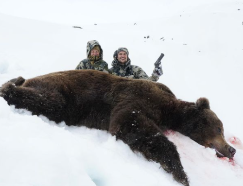 Episode 581: Jammed Rifle Leads to Near Death Experience on Alaskan Brown Bear Hunt